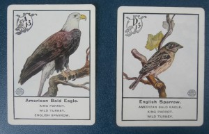 old cards of birds