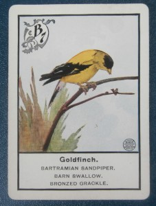 old parker brothers game card in Birds